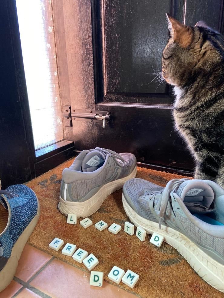 12 shoes